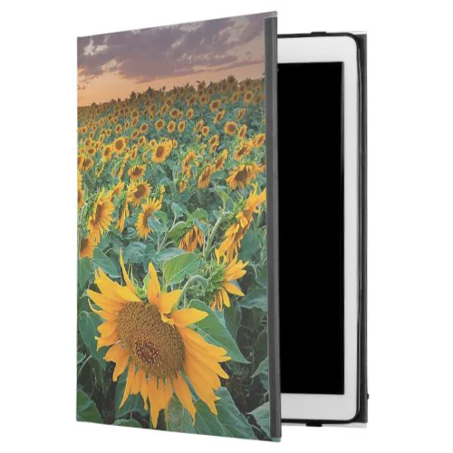 "Sunflower Field in Longmont, Colorado iPad Pro 12.9"" Case"