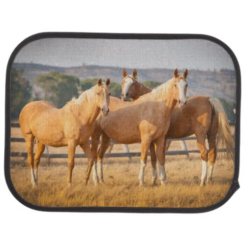 Three Palomino Ponies Car Mat