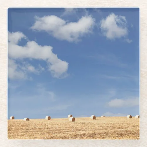 Hay Bales on Field Glass Coaster
